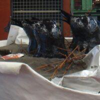 Afval en eksterjongen in KFC-bucket