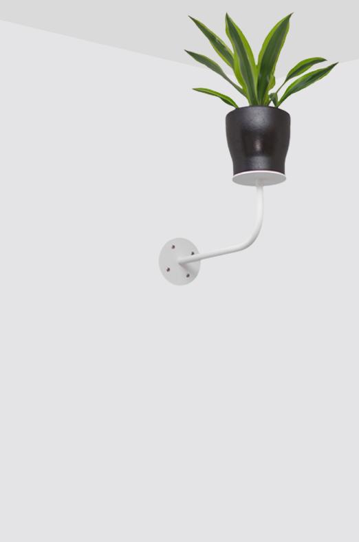 Plafondplant - Stalen wandbeugel voor kamerplanten